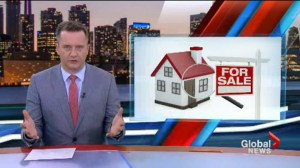 Toronto Real Estate Board urges action on supply of housing