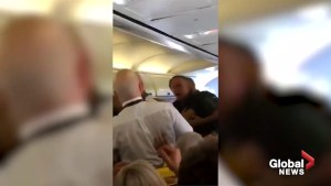 Bloody fight breaks out between passengers on Ryanair flight