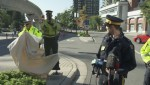 Will Const. Scarecrow make the roads safer in Coquitlam?