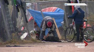 New Brunswick outreach groups work overtime to help homeless during heat wave