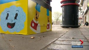 New eye-catching art popping up in Saskatoon's Broadway district
