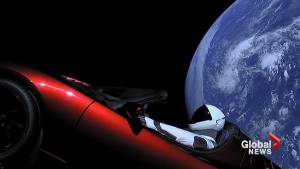 Tesla roadster's 'Starman' on space journey after SpaceX launch