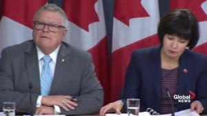 Canadians charged with cannabis simple possession can apply for pardon: Goodale