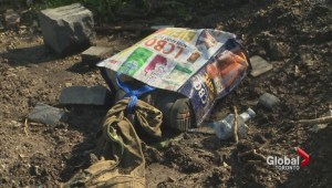 Toronto collects 8,000 tonnes of illegally dumped trash