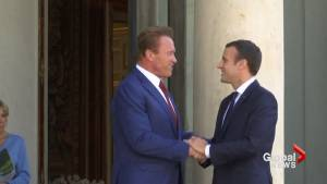 Can't make climate change a political issue: Schwarzenegger meets with Macron