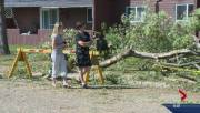 Play video: Storm in North Battleford, Sask. knocks down trees, floods streets