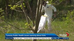 Toronto public health officials warning about dangers of ticks (00:35)