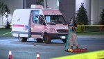 Male pedestrian dead after being hit by vehicle in Markham