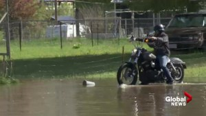 Motorcycle gets stuck in B.C. floodwater