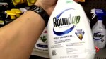 Monsanto found liable in lawsuit alleging weed-killer caused cancer