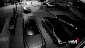 Home surveillance video catches gas thieves in action