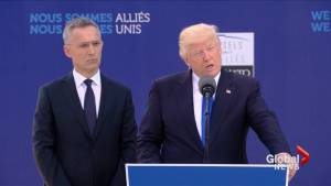 Immigration, Russia should be focus of NATO: Trump