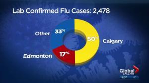 Flu hits Calgary hard for the holidays