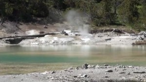 Man dies after falling into acidic hot spring in Yellowstone National Park