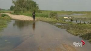 Farming flood impact