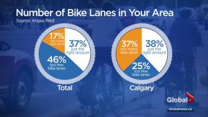 Survey asks what people think about bicycle infrastructure in cities