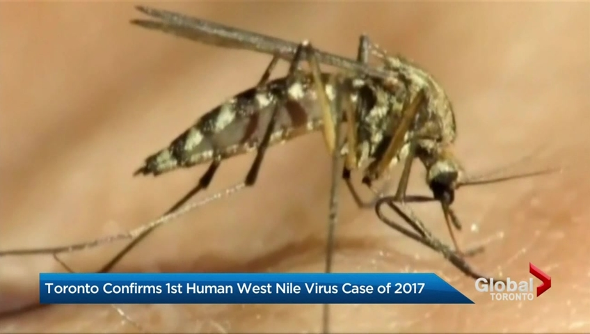 First human exposed to West Nile virus reported in Sacramento County