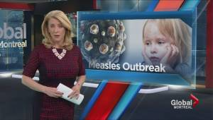 Who should be vaccinated for the measles?