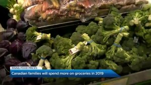 You're going to pay more for your groceries in 2019