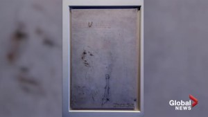 Portrait of Leonardo Da Vinci to go on display for first time