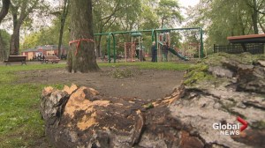 South side of NDG Park still closed after microburst