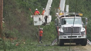 BC Hydro sends in reinforcements to restore power after Thursday's storm