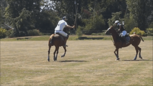 Pacific Polo Cup 2018 preview