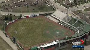Letter from former Blue Jay sparks discussion about future of Edmonton's RE/MAX Field