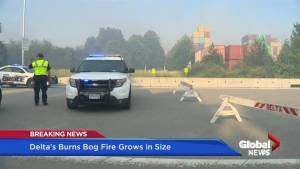 Firefighters battle growing Burns Bog fire overnight (04:55)