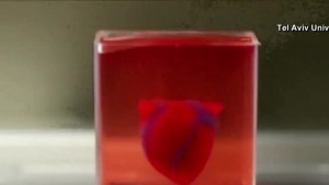 Researchers 3-D print heart, complete with blood vessels