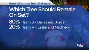 Who won the Christmas Tree Challenge?