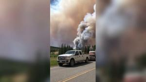 B.C. wildfire evacuees help save Quesnel farms