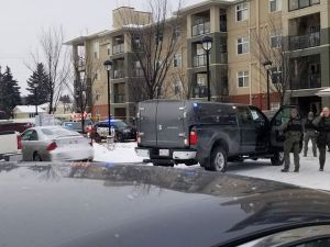 Police respond to southeast Edmonton after reports of shots