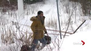 Politicians discuss wave of refugees walking to Canada