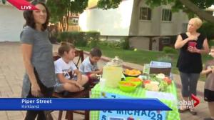 Kirkland lemonade stand for charity