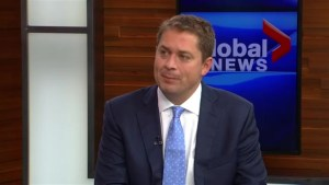 One on one with Andrew Scheer