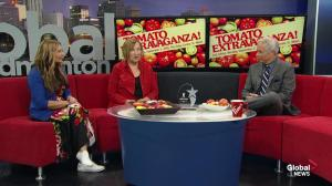 Tomato Extravaganza