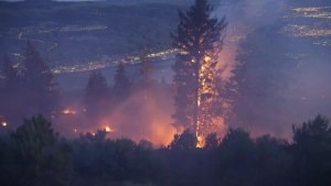 Wildfire danger rating on the rise in British Columbia