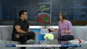 Jan Wong on her new book, Apron Strings