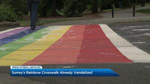 Surrey's rainbow crosswalk already vandalized
