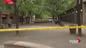 A brawl in a popular downtown Toronto tourist area turns deadly