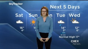 Chance of fog and drizzle overnight, clearing on the weekend