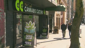 RCMP raids dispensary owned by former Kelowna politician and former WFN chief
