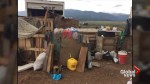 11 children found after authorities raid makeshift compound in New Mexico