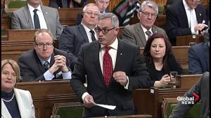 Tony Clement asks Liberals to regain control of Canadian borders