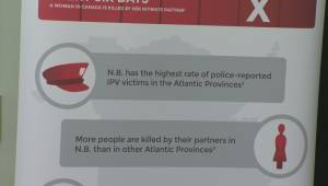 Intimate Partner Violence Act being tabled in New Brunswick