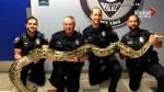 Florida officer wrestles with 3.81-metre python