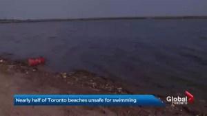 High E. Coli  counts close several Toronto beaches