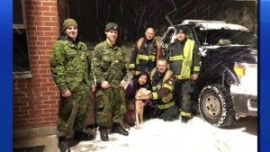 Firefighters help reunite owner with her dog after car crash