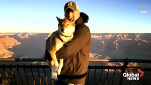 Massachusetts mayor takes terminally ill dog on cross-country road trip